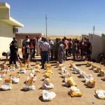 Liaison - Iraq 11